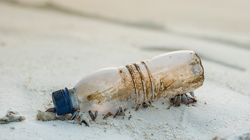 maneras de reducir el plástico